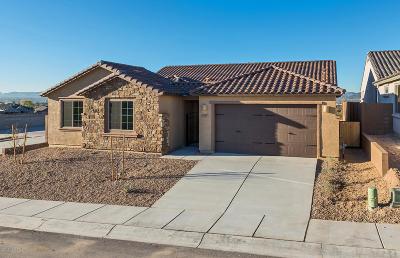 Tucson Single Family Home For Sale: 5287 W Avenida Tierra Alta
