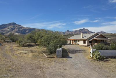 Tubac Single Family Home For Sale: 2048 W Frontage Road