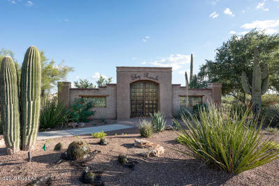 Marana Single Family Home For Sale: 4164 W Summer Ranch Place