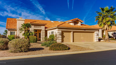 Saddlebrooke Single Family Home Active Contingent: 37356 S Desert Star Drive