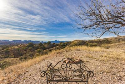 Patagonia Single Family Home For Sale: 124 Wood Canyon Road