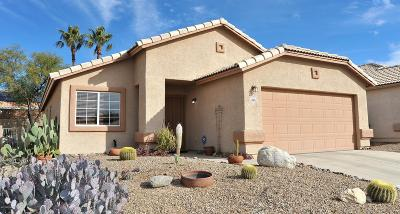 Tucson Single Family Home For Sale: 4476 W Holly Berry Way