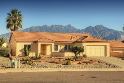 Green Valley  Single Family Home For Sale: 4145 S Via De Febrero