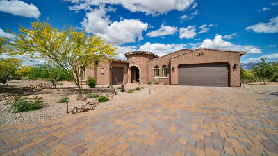 Marana Single Family Home For Sale: 12294 N Durham Wash Drive