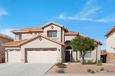 Oro Valley Single Family Home For Sale: 648 W Paseo Rio Grande
