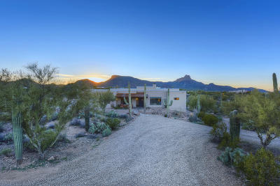 Tucson Single Family Home For Sale: 7067 W Ina Road