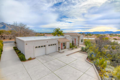 Oro Valley Single Family Home For Sale: 11305 N Copper Spring Trail