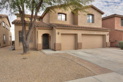 Sahuarita Single Family Home Active Contingent: 14701 S Avenida Cucana