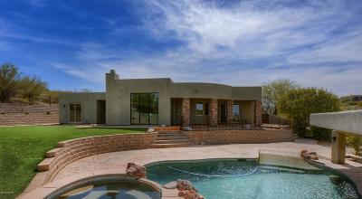 Tucson Single Family Home For Sale: 5880 N Tucson Mountain Drive