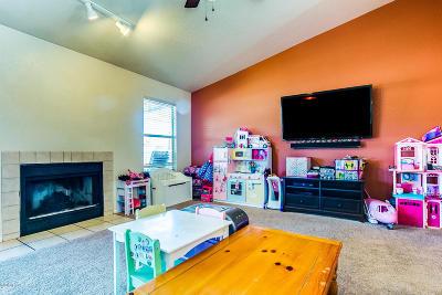 Tucson Single Family Home Active Contingent: 8241 S Via Del Barquero