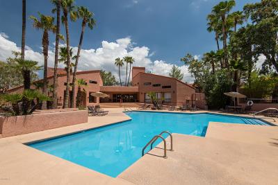 Tucson Condo For Sale: 5051 N Sabino Canyon Road #1238