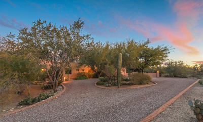 Tucson Single Family Home For Sale: 285 W Atua Place
