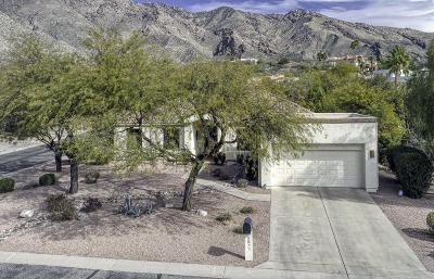 Tucson Single Family Home For Sale: 5571 E Silver Mine Place
