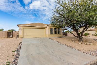 Single Family Home For Sale: 7216 S Sand Dune Valley Drive