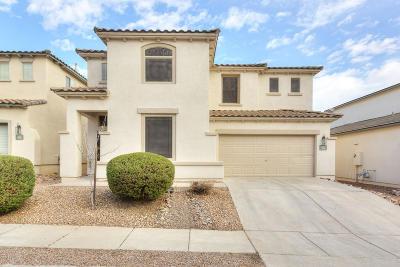 Sahuarita Single Family Home Active Contingent: 80 W Camino Rancho Vecino
