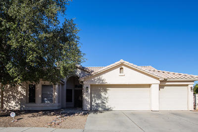 Tucson Single Family Home For Sale: 6850 W Kern Drive