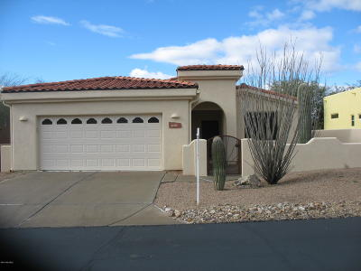 Tucson Single Family Home For Sale: 2130 Triangle X Lane