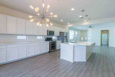 Tucson Single Family Home Active Contingent: 6613 E Via Boca Chica