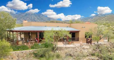 Tucson Single Family Home For Sale: 4017 N Broken Springs Trail