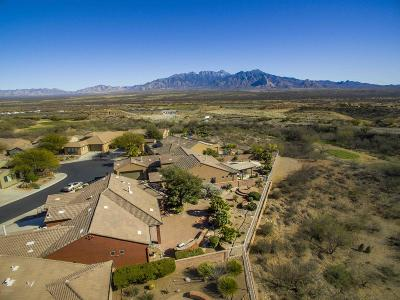 Green Valley Single Family Home Active Contingent: 1965 W Cactus Run Drive