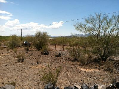 Residential Lots & Land For Sale: 7625 S Atkinson Lane