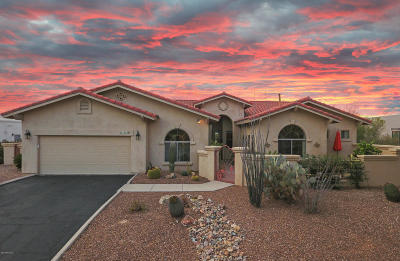 Pima County Single Family Home For Sale: 12129 N Tall Grass Drive
