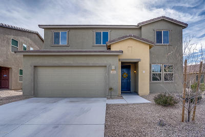 Sahuarita Single Family Home For Sale: 1078 E Lumberjack Trail
