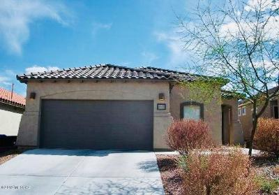 Sahuarita Single Family Home For Sale: 957 W Calle Valenciana