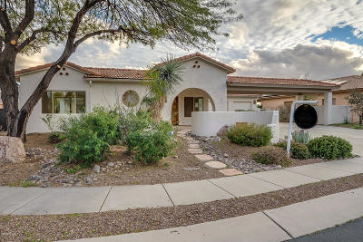 Oro Valley Single Family Home For Sale: 501 W Klinger Canyon Drive