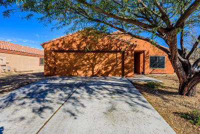 Pima County, Pinal County Single Family Home For Sale: 4069 E Lushfield Drive