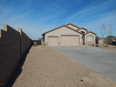Single Family Home For Sale: 13903 N Stone Palisade Drive