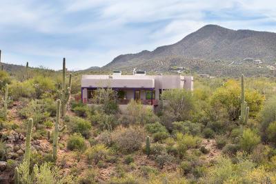 Tucson Single Family Home For Sale: 1977 N Calle Del Suerte