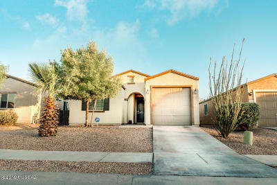 Pima County Single Family Home For Sale: 5258 E Desert Straw Lane