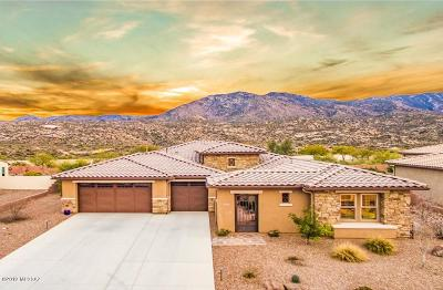 Pima County, Pinal County Single Family Home For Sale: 66943 E Wilderness Rock Drive