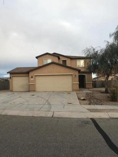 Sahuarita Single Family Home For Sale: 18767 S Avenida Paso Cortito