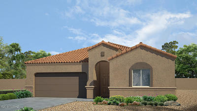 Marana Single Family Home For Sale: 9801 N Howling Wolf Road