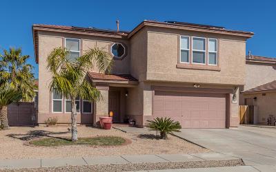 Tucson Single Family Home For Sale: 8477 E Ramona Madera Lane