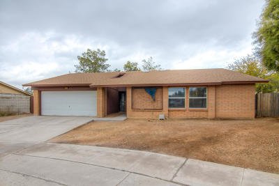 Single Family Home For Sale: 4776 W Cheetah Street
