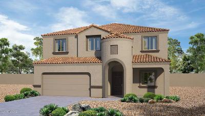 Marana Single Family Home For Sale: 9644 N Texas Ebony Lane