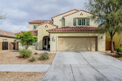 Single Family Home For Sale: 10967 E White Sage Drive