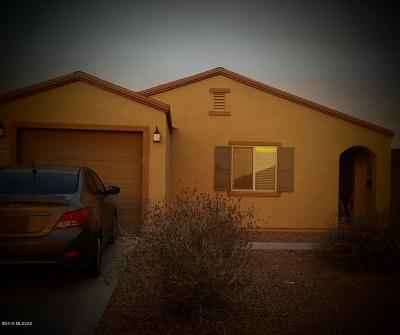 Pima County, Pinal County Single Family Home For Sale: 7049 S Red Maids Drive