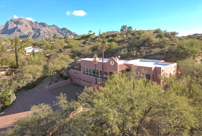 Pima County Single Family Home For Sale: 835 W Valle Del Oro Road