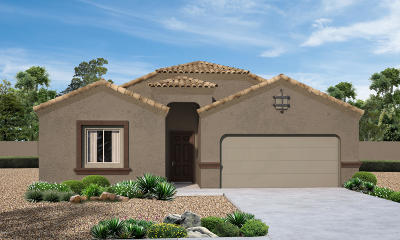 Marana Single Family Home For Sale: 9361 W Gambel Oak Lane