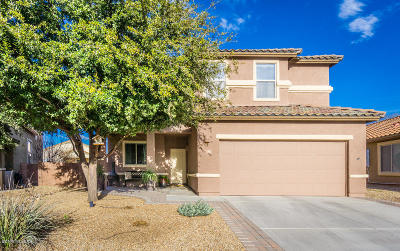 Sahuarita Single Family Home Active Contingent: 131 S Beyerville Place