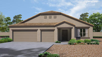 Marana Single Family Home For Sale: 9409 W Desert Bighorn Trail