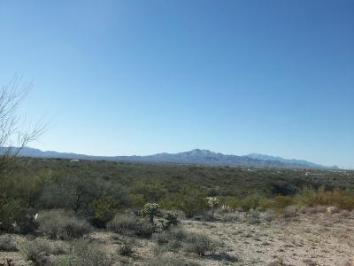 Residential Lots & Land For Sale: 11178 S Lava Peak Road
