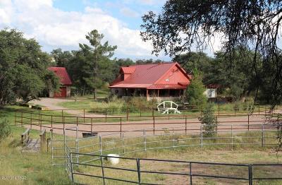Sonoita Single Family Home For Sale: 108 Apache Trail