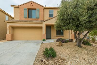 Single Family Home For Sale: 10682 S Kush Canyon Lane