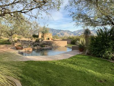 Oro Valley Rental For Rent: 931 Tortolita Mountain Circle