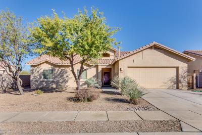 Marana Single Family Home For Sale: 5134 W Bass Butte Lane